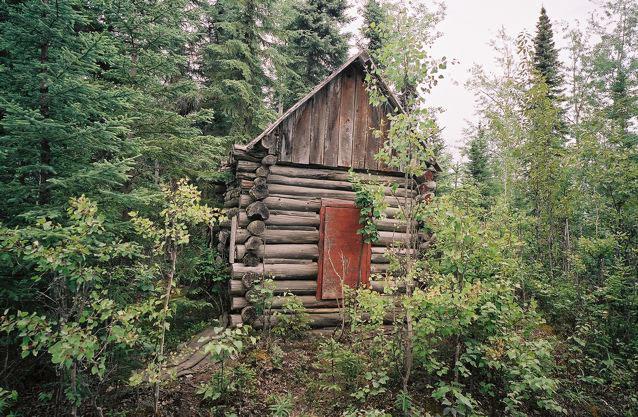 Alsaka Forest tiny house