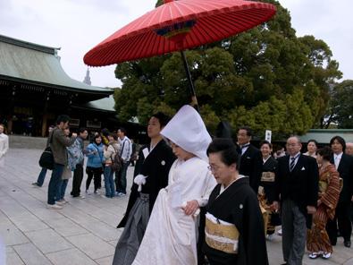 Madsaki and Meiji Shrine